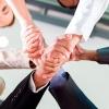 Friends: Partnership & Member Support